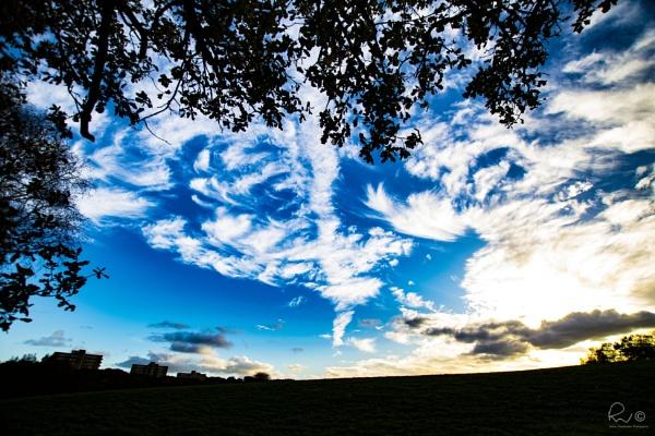 Scotland Wood Skies by TheWoolf