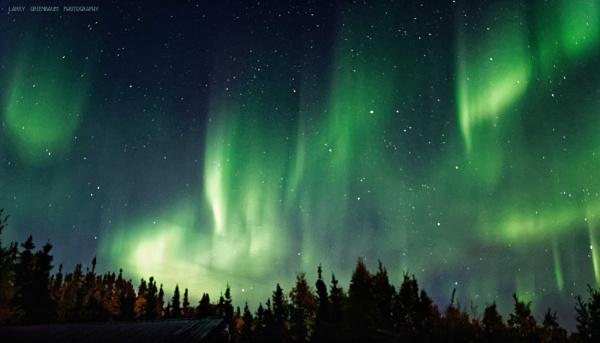 Northern Lights by LarryG