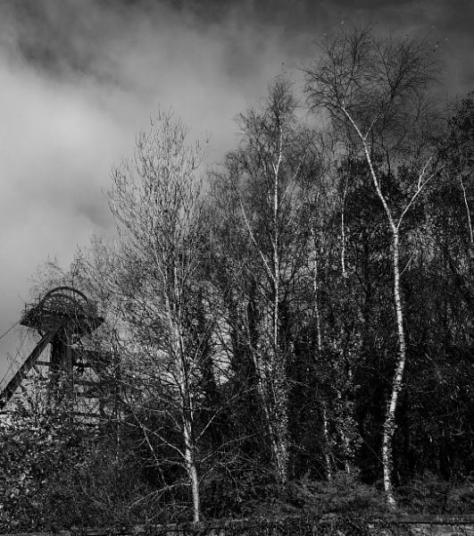 Winding Gear, Rhondda Valley by llwynog