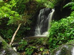 Horseshoe Falls 1