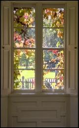 Autumn Through a Window
