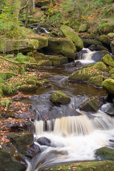 Padley Gorge, Derbyshire. by Belleyeteres
