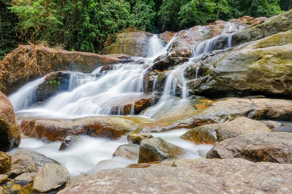 Rainforest river by Stevetheroofer