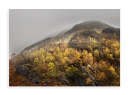 Glen Nevis Autumn colurs
