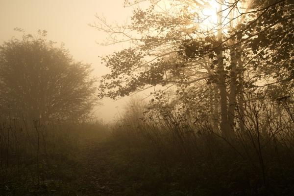 The Misty Way by alfpics