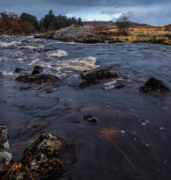 River Gaur by Bigpoolman