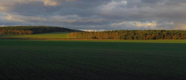 Autumnal Series - Green Panoramic by PentaxBro