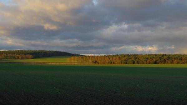 Autumnal Series - Green Panoramic ver.2 by PentaxBro