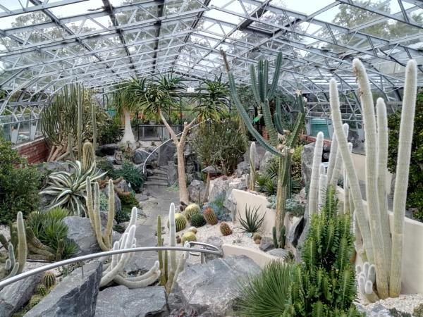 Botanical Gardens 12 by PentaxBro