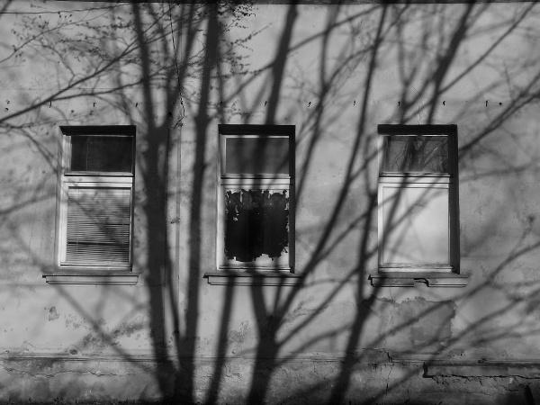 Sad shadows