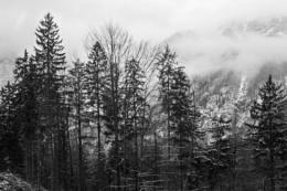 Austria's Mountains