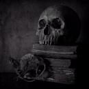 Slightly Spooky? by cattyal