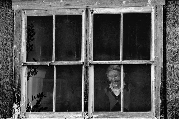 The Watcher by Joline