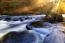 Autumn Light on the River by douglasR