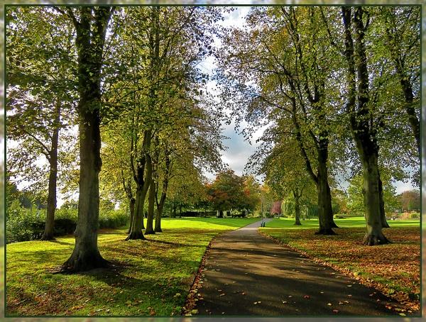 Autumn Saturday Shadows by Sylviwhalley