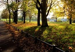 Autumn in Birmingham