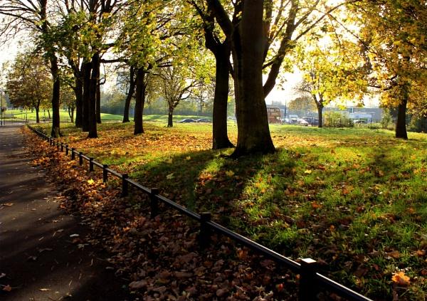Autumn in Birmingham by helenlinda