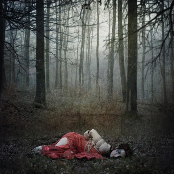Dark Hollow by Scaramanga