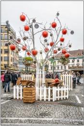 Czech apple tree