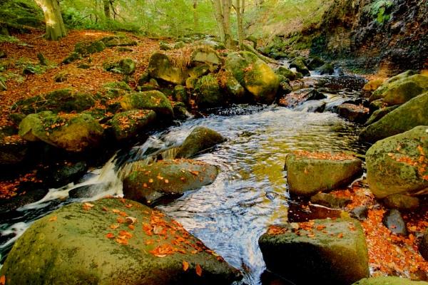 Autumn Flow by altosaxman
