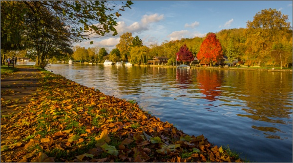 Henley in the Autumn by esoxlucius