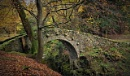 autumn - bridge 1787 r. by atenytom at 11/11/2017 - 10:53 PM