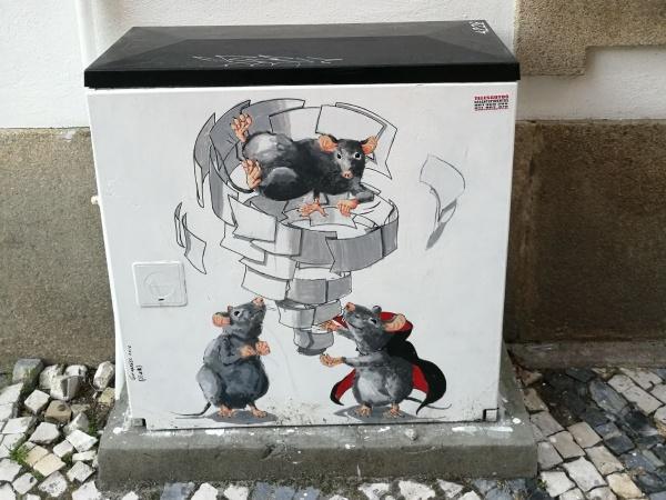 Wild boxes! by Chinga