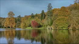 Lakeside @ Stourhead.