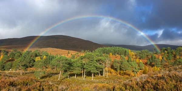 Autumn Rainbow by CliffGreen