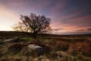 Pre Dawn by BIGRY1