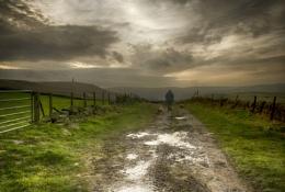 A Walk in the Mud