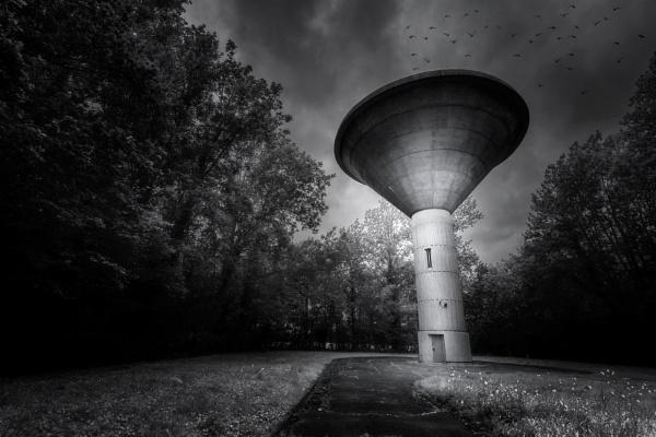 Mushroom by jpappleton