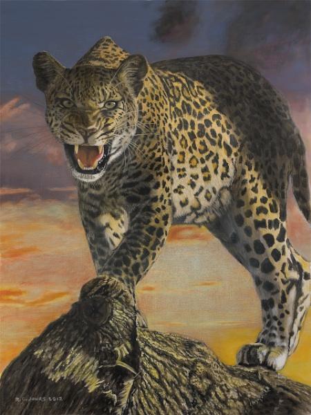 Leopard by Aeros