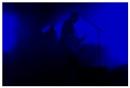 Fink live in concert (blue) by bliba