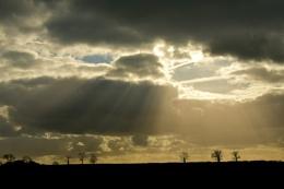 Photo : Pathway to heaven?