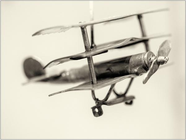 Triplane by woolybill1
