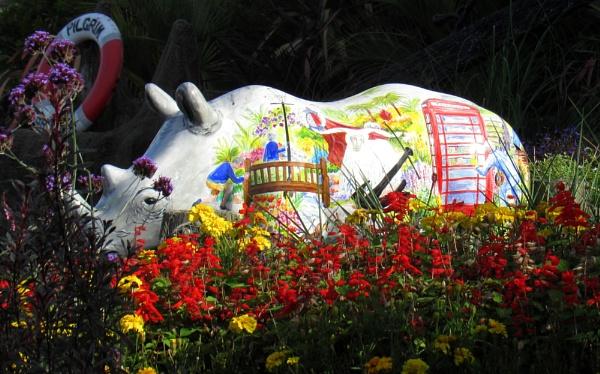 Brixham White Rhino by oldgreyheron