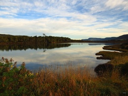 Tahakopa River 4