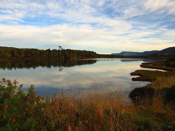 Tahakopa River 4 by DevilsAdvocate