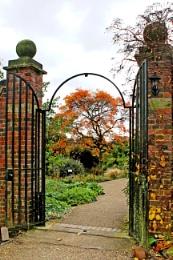 Winterbourne in November