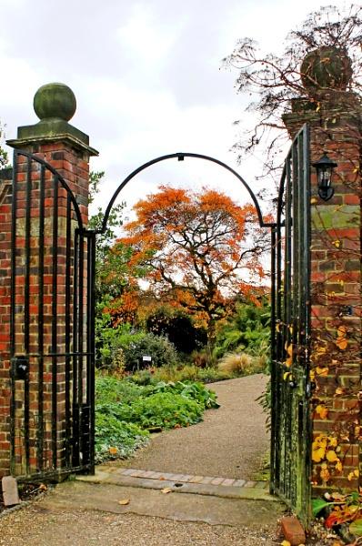 Winterbourne in November by helenlinda