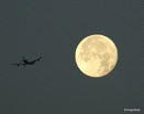 Fly me to the moon by AndysShots