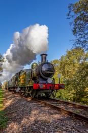 EAST GRINSTEAD, WEST SUSSEX/UK - OCTOBER 24 : Festival of Steam