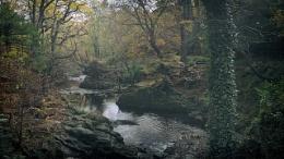 autumn - N.Ireland