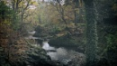 autumn - N.Ireland by atenytom at 17/11/2017 - 12:43 PM
