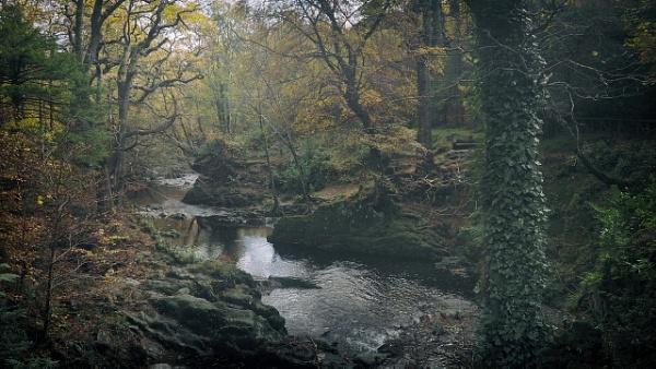 autumn - N.Ireland by atenytom