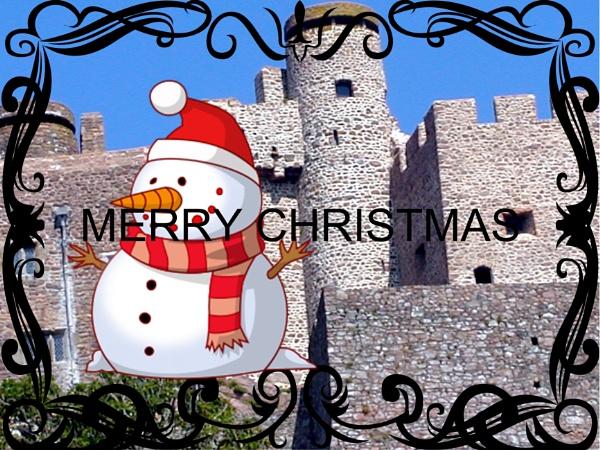 CHRISTMAS GREETINGS by williamsloan