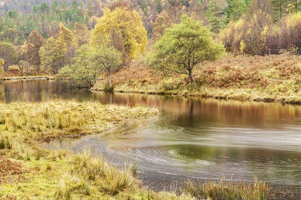 Autumn swirrils by Dallachy