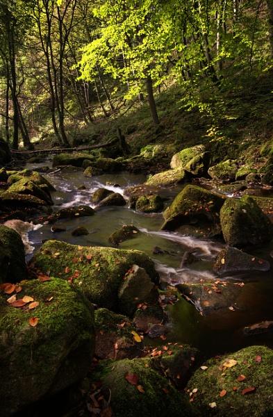 Padley Gorge by Trevhas
