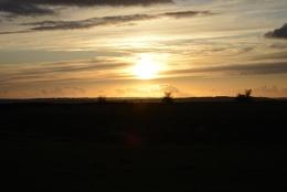 Sunset Figure